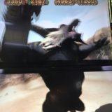 【メダルゲーム日記】モンハン尽くしの前半戦!リオレウスJPゲットなるか!?
